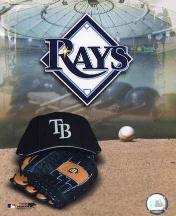 Framed 2008 Tampa Bay Rays Team Logo Print