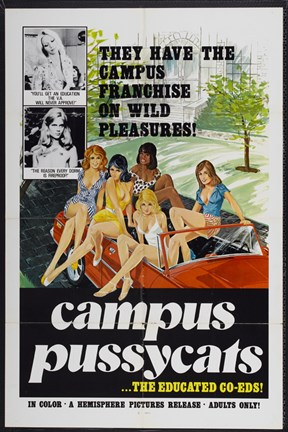 Framed Campus Pussycats Print