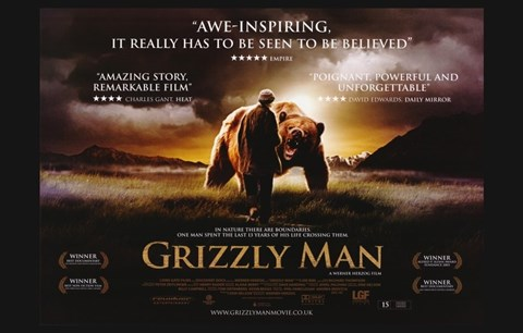Framed Grizzly Man - awe-inspiring Print