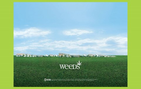 Framed Weeds (TV) Town Print