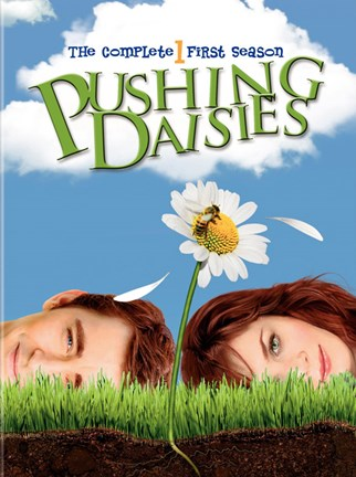 Framed Pushing Daisies 1st Season Print