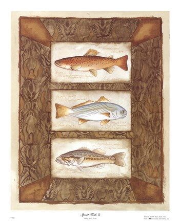 Framed Sport Fish II Print