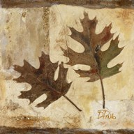 Fall II  Fine Art Print