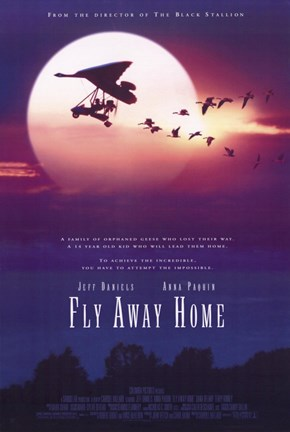 Framed Fly Away Home Print