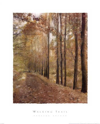 Framed Walking Trail Print
