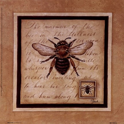 Framed Worker Bee Print