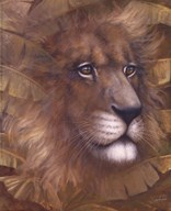Safari Lion  Fine Art Print