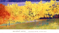 Escalante Spring  Fine Art Print