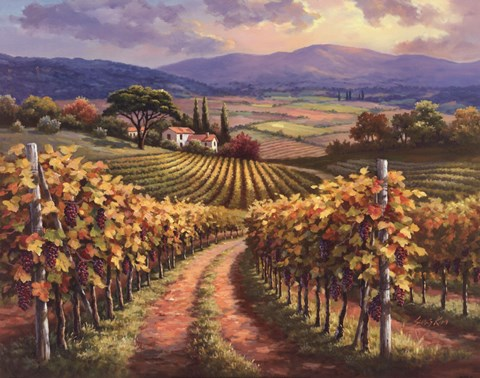 Framed Vineyard Hill I Print