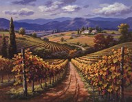 Vineyard Hill II  Fine Art Print