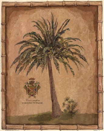 Framed Caribbean Palm III With Bamboo Border Print