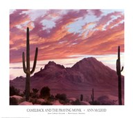 Camelback And The Praying Monk  Fine Art Print