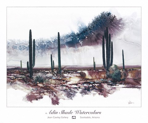 Framed Desert Monsoon Skies Print