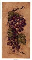 Vintage Grapevine ll Art