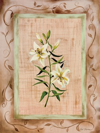Framed Country Lily Print