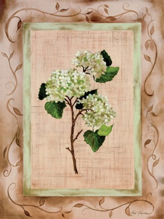 Framed Country Hydrangea Print