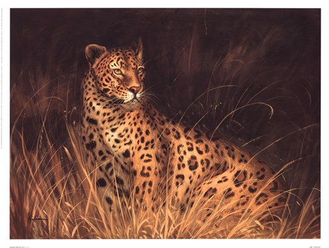 Framed Spotted African Cat Print