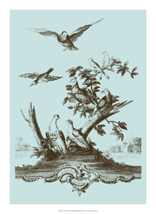 Framed Avian Toile IV Print