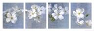 Blossom Panel  Fine Art Print