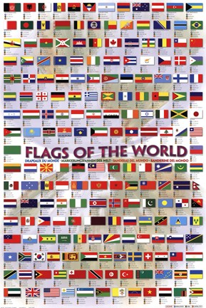 Framed Flags of the World 2008 Print