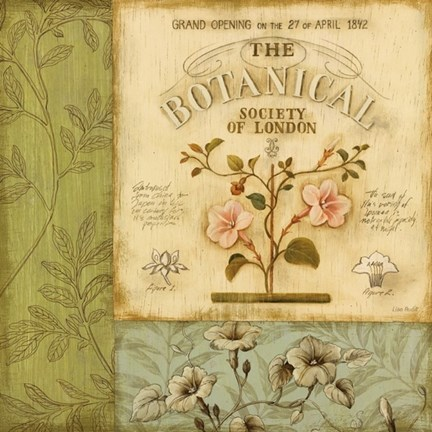 Framed Botanical Exhibit I Print
