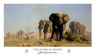 The Ivory Is Theirs  Fine Art Print