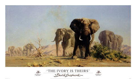 Framed Ivory Is Theirs Print