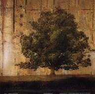 Aged Tree I Art