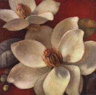 Magnolia Passion I