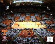 Thompson Bolling Arena - Univer. of Tennessee  Fine Art Print