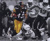 Troy Polamalu 2009 In the Spotlight Action