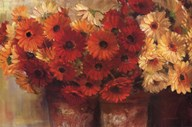 Chelsea Gerberas  Fine Art Print