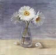 Daisies and Shells Art