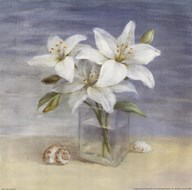 Lilies and Shells Art