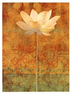 Abstract Lotus I