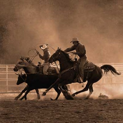 Framed Roping on the Ranch II Print