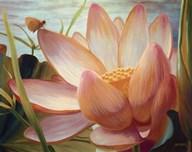 Lotus Landing  Fine Art Print