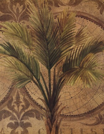 Framed Decorative Palm II Print