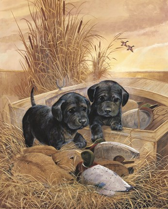 Black Lab Pups Fine Art Print By Ruane Manning At