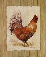 Chanteclair  Fine Art Print