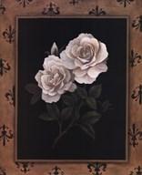 Rose Fleur  Fine Art Print