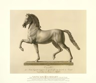 Horse for an Equestrian Statue, (The Vatican Collection)