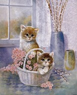 Flower Basket with Cats  Fine Art Print