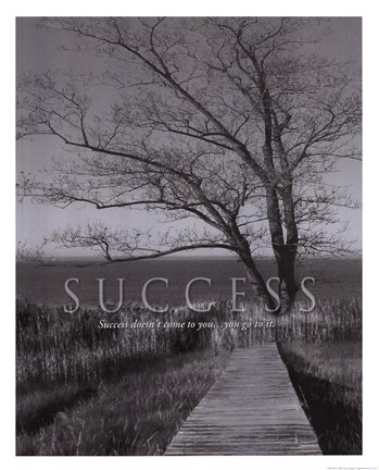 Framed Success Print