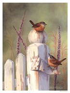 Wrens On Fence Post Art