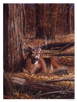 Framed Deer In Leaves Print