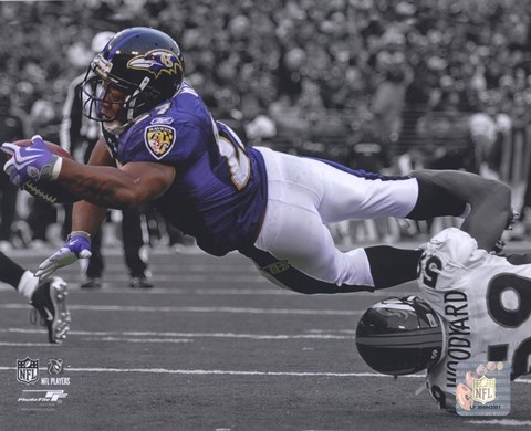 Framed Ray Rice 2009 Spotlight Collection Print