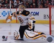 Tim Thomas 2009-10 Action