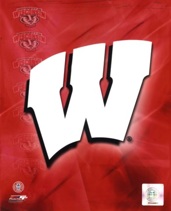 Framed 2009 University of Wisconsin Badgers Team Logo Print