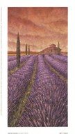 Soleil De Provence I  Fine Art Print